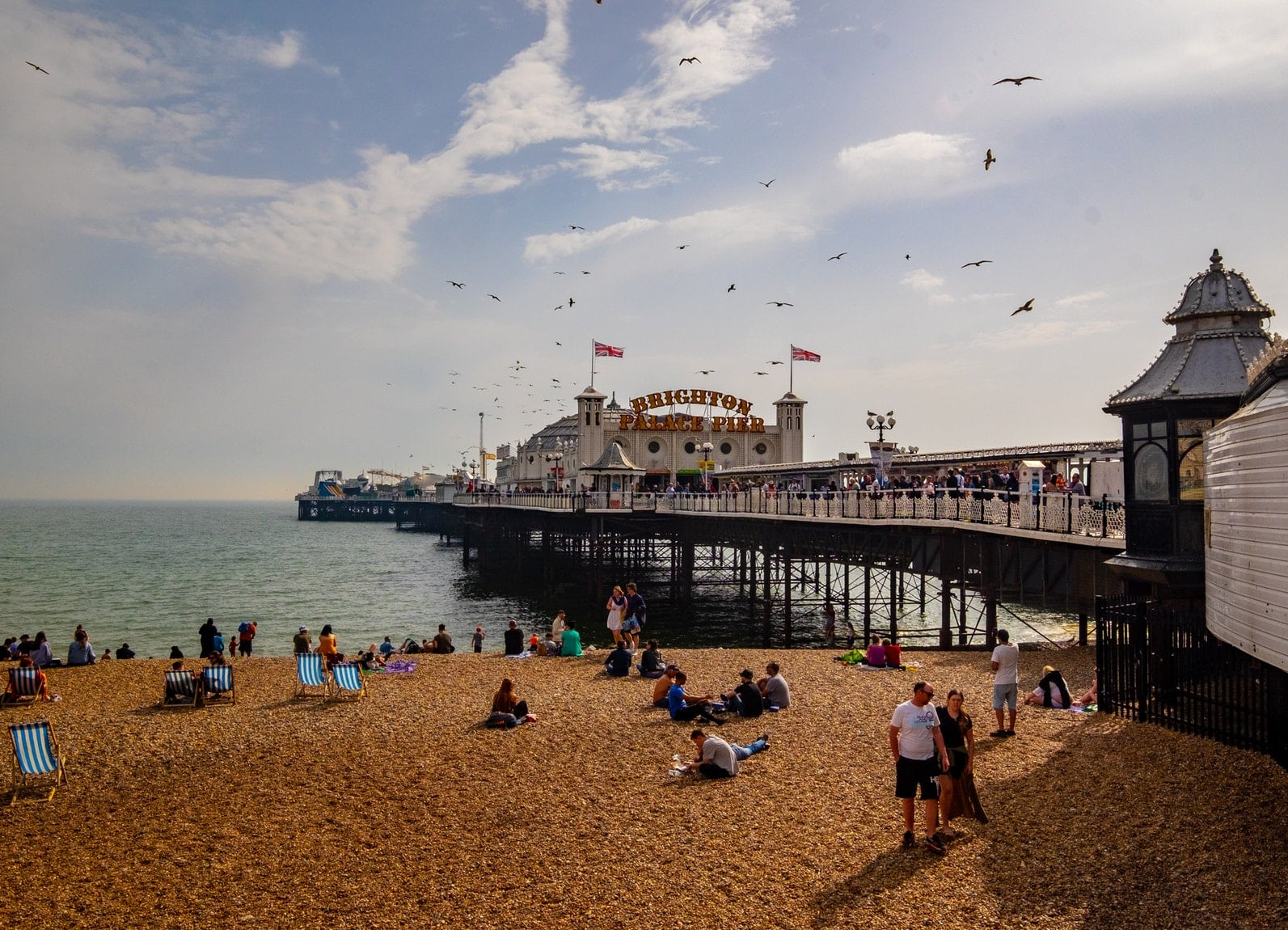 brighton business