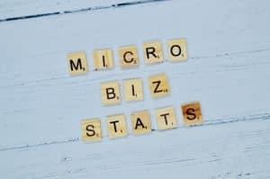 micro business statistics 2019